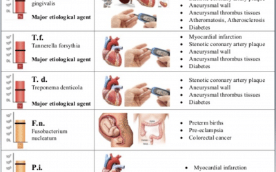 Systematic Diseases and Oral Bacteria